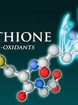 Glutathione master of antioxidants